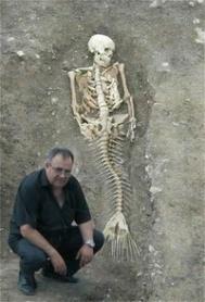 squelette epochtimes